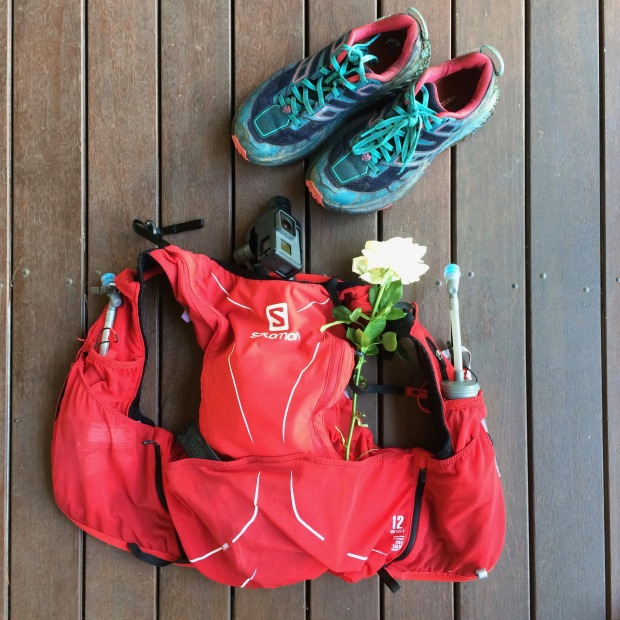Salomon hydration pack